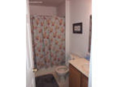 Roommate wanted to share 3 BR 2.5 BA condo/townhome...