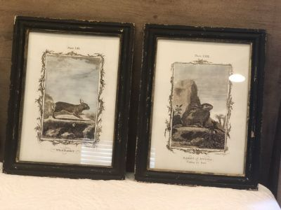 Rabbit framed Art Set