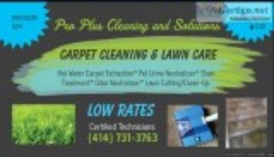 Carpet cleaning certified low rates