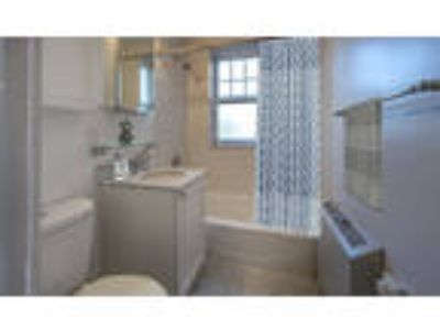 Chauncy Court Apartments - Three BR