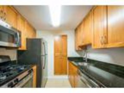 One BR One BA In Chestnut Hill MA 02467