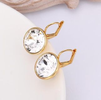 Stunning Earrings at a Wholesale Price