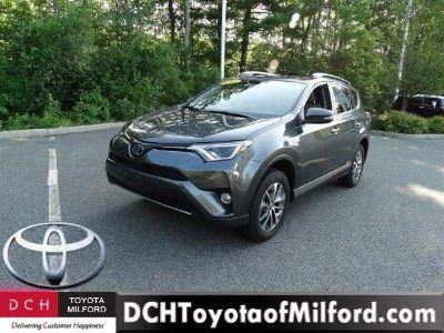 2018 Toyota RAV4 (Magnetic Gray Metallic)