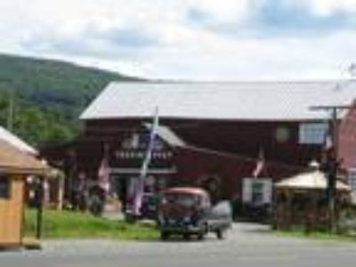 Homes for Sale by owner in Middleburgh, NY