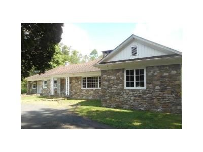 2 Bed 1.5 Bath Foreclosure Property in Tannersville, PA 18372 - Warner Road