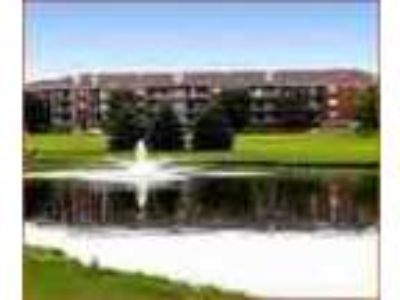 2bed2bath In St Louis Park Pool 24hour Gym Ac