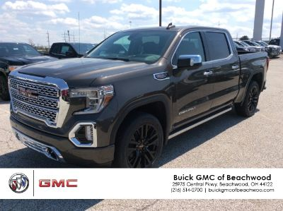 2019 GMC Sierra 1500 Denali (Quartz Metallic)