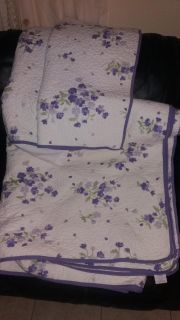 Queen size quilt and 2 pillow shams, pick up in Brazoria