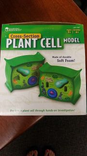 Brand new Science Cross Section Plant Cell Model