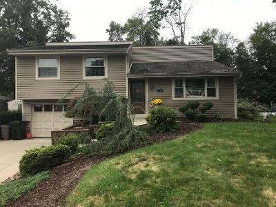 3 Bed 1.5 Bath Preforeclosure Property in South Park, PA 15129 - Maple Dr