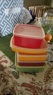 Tupperware sandwich containers