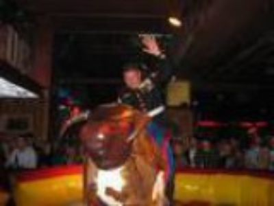 Indianapolis Inflatable Mechanical Bull For Rent for Rent
