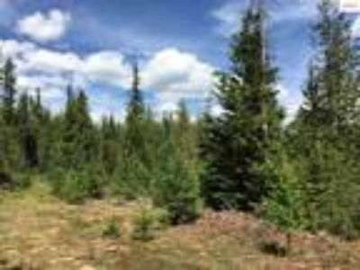 Sandpoint Real Estate Land for Sale. $110,000 - Kathy Robinson of