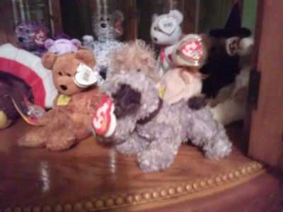 Large collection 50 +beanie babies for sale