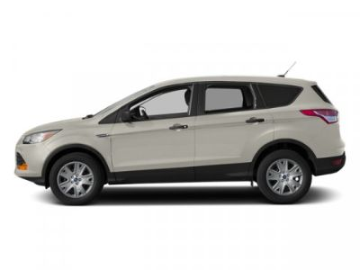 2013 Ford Escape SE (White Platinum Tricoat)