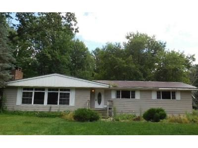 3 Bed 1 Bath Foreclosure Property in Lakeview, MI 48850 - Howard City Edmore Rd