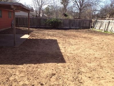 Tree work, grass planting, brush and stump removal, trash haul off, spring cleaning