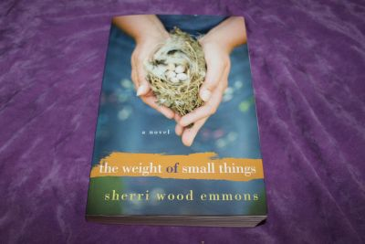 The Weight of Small Things (Paperback) by Sherri Wood Emmons