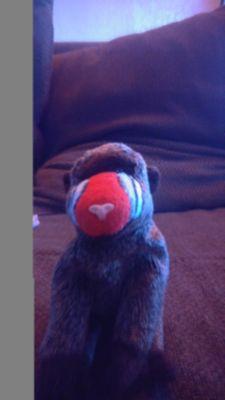 Beanie Baby! Cheeks the baboon
