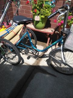 3 wheeler bicycle (star lite trike)