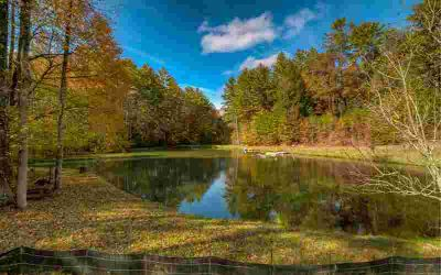 15.16 Yonah Path Ellijay, PADDLE BOAT IN YOUR OWN POND!