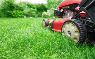 Looking for local lawn service to mow Clute/Richwood soccer fields