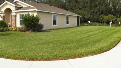 >>>NTX Lawncare <<<