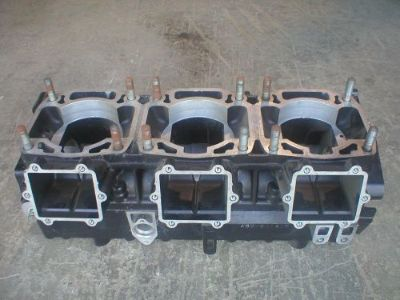Purchase Thunder cat 900 and 1000 ZRT 800 engine cases. motorcycle in Amherst, Ohio, United States, for US $165.00