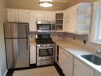 Beautiful Large One BR W/ Hardwood Floors & Parking!