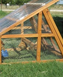 Duck coop for sale- Portable and Protective