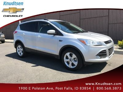 2015 Ford Escape SE (Ingot Silver)