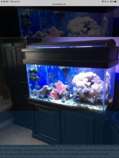 90 gal saltwater tank +tons of extra equipment