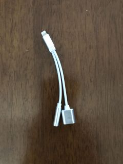 iPhone charger and headphone jack