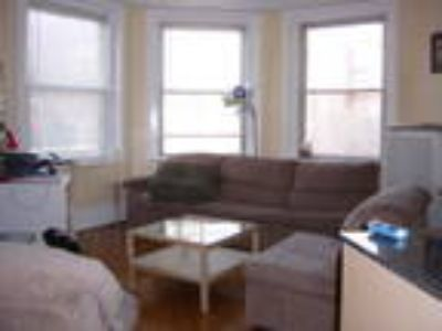 Boston One BA, Renovated 3 BR, walk to BU in minutes!