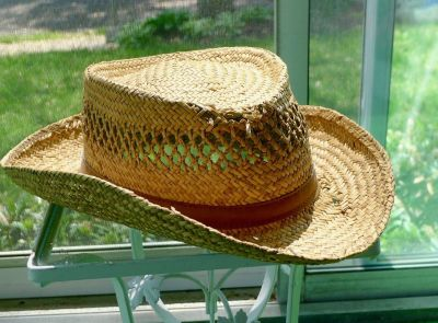 My Tropical Stetson Bridger - Shapeable Straw Cowboy Hat