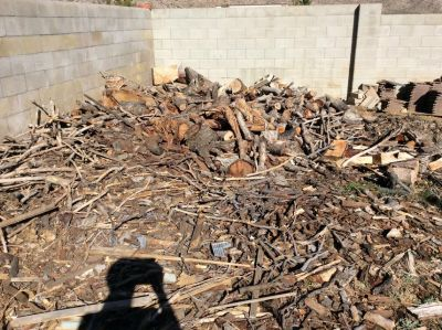 oak firewood and misc wood and chips