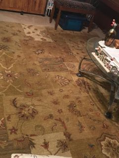 Area rug 100% wool Artemis collection 7.6X9.6 100.00