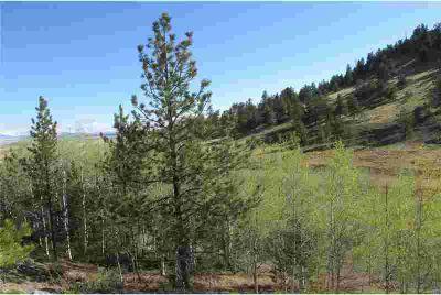 2667 Ranch Road Hartsel, Colorado at it's best!