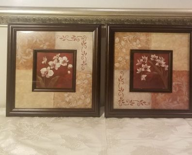 Pair of Frame Pictures with Flowers