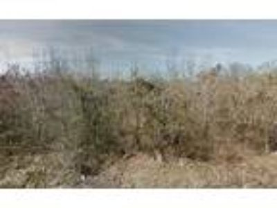 0.11 Acres For Sale In Pine Bluff, AR