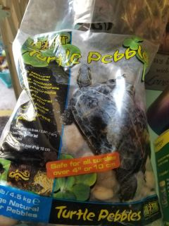 Turtle stuff didnt need all of it...amonia cleaner/rocks/filter & filter bags/heater