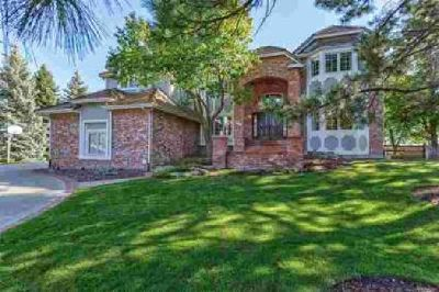 9594 La Costa Lane Lone Tree Four BR, Custom home in 's