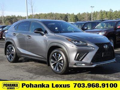 2018 Lexus NX (Gray)