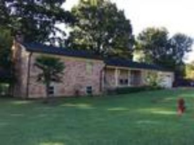 603 Pine Forest