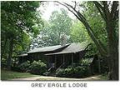 Grey Eagle Lodge - Lodge