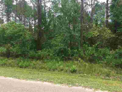 10210 Light Ave Hastings, Wooded lot over an acre on paved