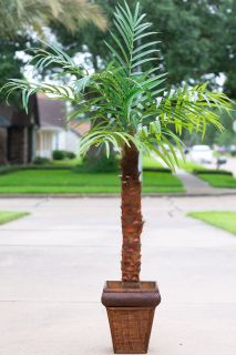 Artificial Pygmy Date Palm Tree