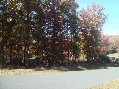 Foreclosure Property in Denton, NC 27239 - Pinnacle Trl