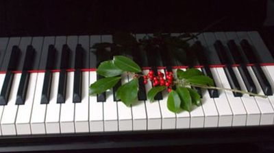 Quad Cities Church Organist or Pianist is Available for Christmas Eve or Day