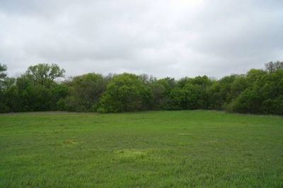 x0024110000 Land for Sale in Van Alstyne, TX (7.56 acres) (VAN ALSTYNE)